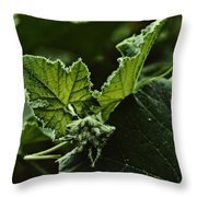 Vegetative Dragon Throw Pillow
