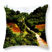 Venezuelan Way Throw Pillow