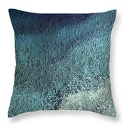 Vent Tubeworms Throw Pillow