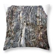 Vertical Sedimentary Strata Throw Pillow