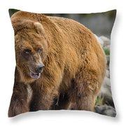 Very Big Bear Throw Pillow
