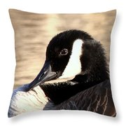 Very Interesting Throw Pillow