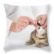 Vet And Kitten Throw Pillow