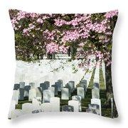 Veterans National Cemetery Throw Pillow