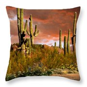 Via Del Oeste Throw Pillow