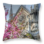 Vibrant Cathedral Throw Pillow