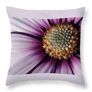 Vibrant Throw Pillow