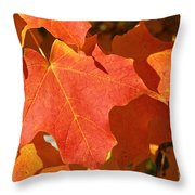 Vibrant Maple Throw Pillow
