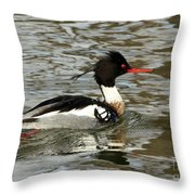 Vibrant Red Breasted Merganser At The Lake Throw Pillow