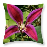 Vibrant Star Throw Pillow