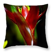 Vibrantly Rich In Red Throw Pillow