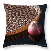 Victoria Amazonica Giant Water Lily Throw Pillow