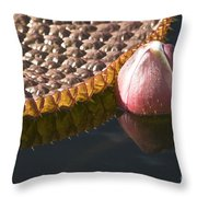 Victoria Vi Throw Pillow