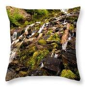 Vidae Falls Throw Pillow