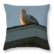 View At Dusk Throw Pillow