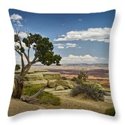 View From A Mesa Throw Pillow