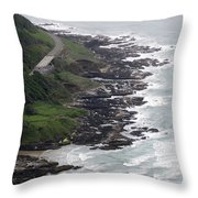 View From Cape Perpetua Throw Pillow
