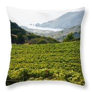View From Catalina Island Throw Pillow