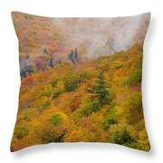 View From North Mountain Look-off Throw Pillow