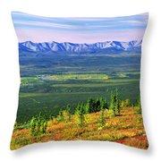 View From Ogilvie Ridge Lookout Throw Pillow