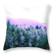 View From Paradise Farm Throw Pillow