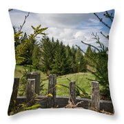 View From Picket Fence Throw Pillow