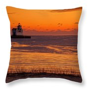 View From Shore Throw Pillow