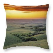 View From The Cypress Hills Throw Pillow