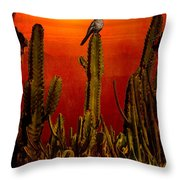 View From The Mission Throw Pillow