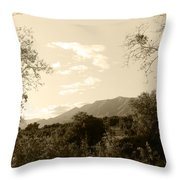 View In The Valley Throw Pillow
