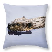 View Of Beaver, Chaudiere-appalaches Throw Pillow