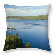 View Of Boulardarie Island From Seal Throw Pillow