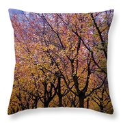 View Of Prague From Mala Strana Park Throw Pillow