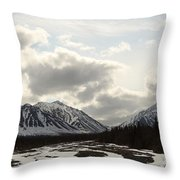 View Of Quill Creek In Kluane National Throw Pillow