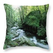View Of Roaring Fork Creek Throw Pillow