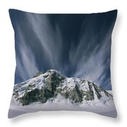 View Of The Combatant Col Throw Pillow