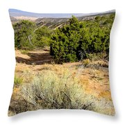 View Of The Desert New Mexico Throw Pillow