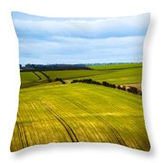 View On Fields Throw Pillow