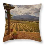 View Toward Mt Shasta Horizontal Throw Pillow