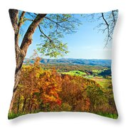 View With Caution Throw Pillow