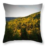 Vignette Of Autumn Gold  Throw Pillow