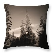 Vignette In Sepia  Throw Pillow