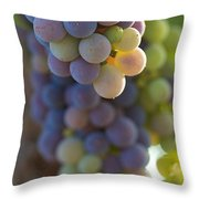 Vine Ripe One Throw Pillow
