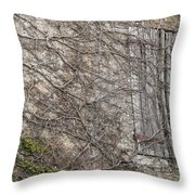 Vinely Wrapped Throw Pillow