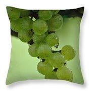 Vineyard Grapes I Throw Pillow