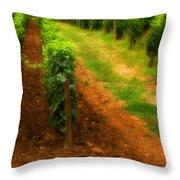Vineyard In Burgundy France Throw Pillow