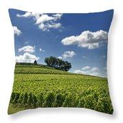 Vineyard Of Saint-emilion. Gironde. Aquitaine. France Throw Pillow