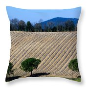 Vineyard On A Hill With Trees Throw Pillow