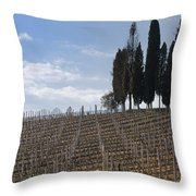 Vineyard With Cypress Trees Throw Pillow
