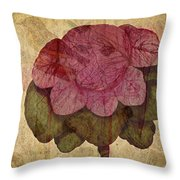 Vintage Cabbage Throw Pillow by Bonnie Bruno